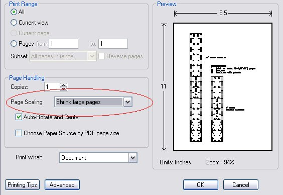 how to print to scale in pdf